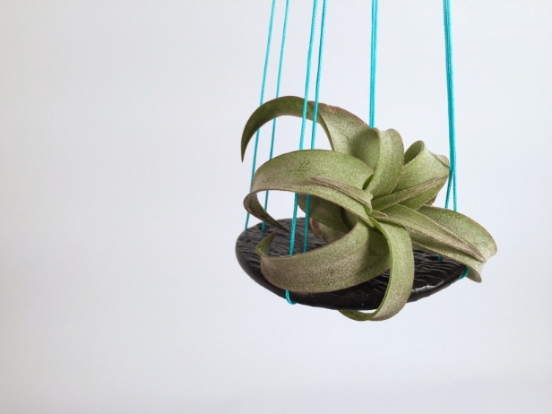 Simple Hanging Air Plant Holders
