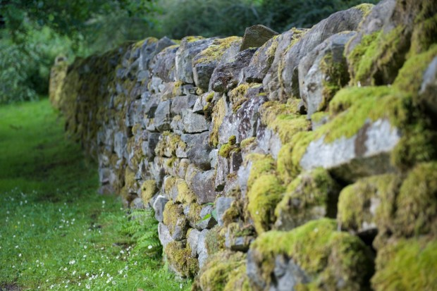 Stone walls can be seen all over Scotland.